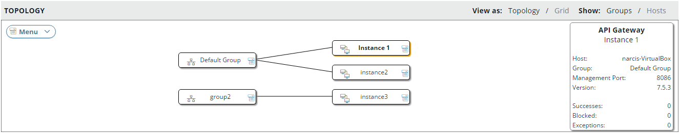 API Gateway instance version in topology groups view