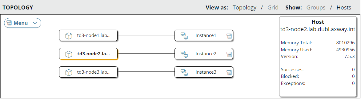 Host version in topology hosts view