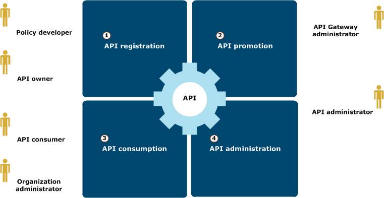 API management lifecycle